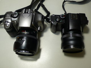 fz10 & cannon rebel ds6041
